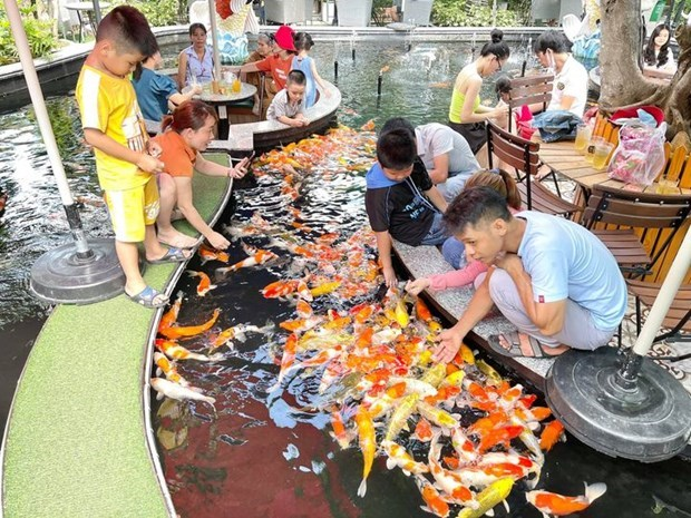 Koi fish coffee in HCM City catches foreign media attention hinh anh 4