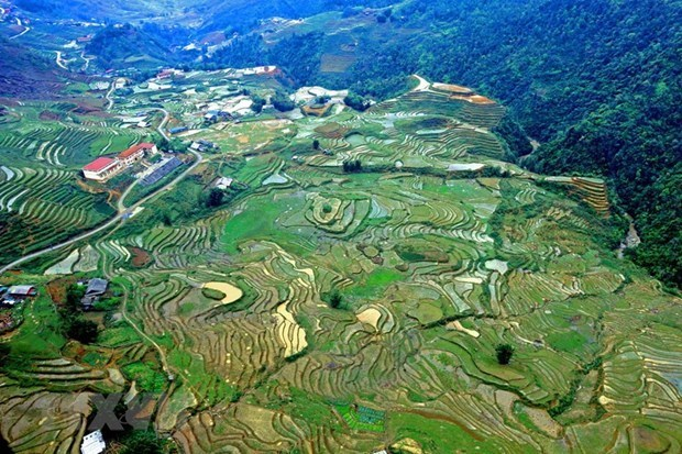 Lao Cai province takes action to recover tourism post-COVID-19 hinh anh 2