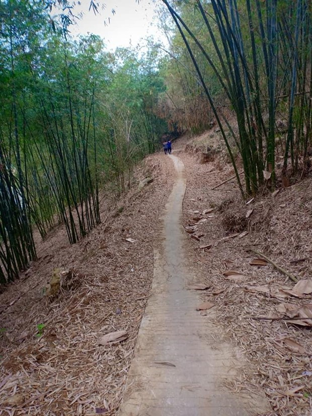 Da Bac tourism: progress initiated by pioneers hinh anh 4