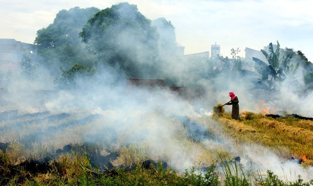 Vietnam determined to reduce GHG emissions by 9 percent in 2030 hinh anh 1