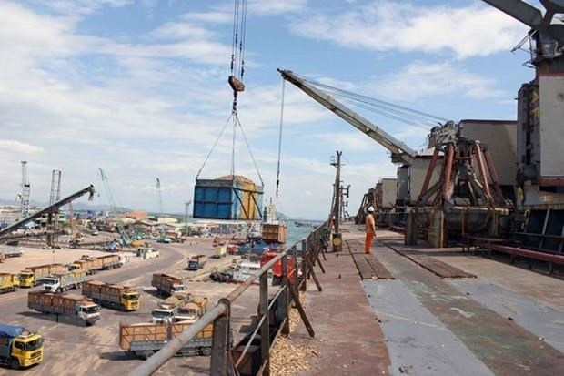 Quy Nhon Port's new face expected after transfer hinh anh 1