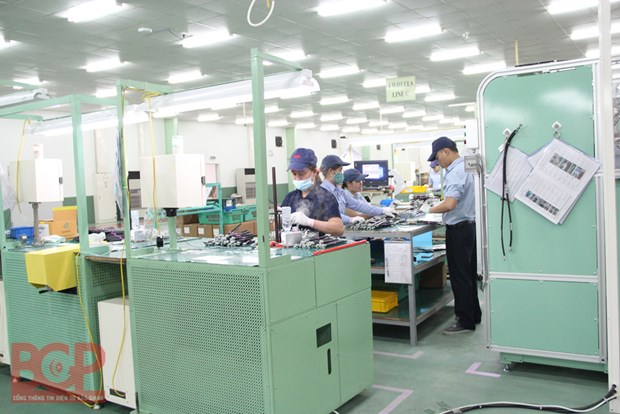 Bac Giang tapping biotechnology in socio-economic development hinh anh 1