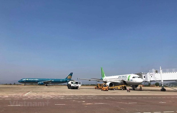 Airlines face challenges in opening direct flights to US hinh anh 1