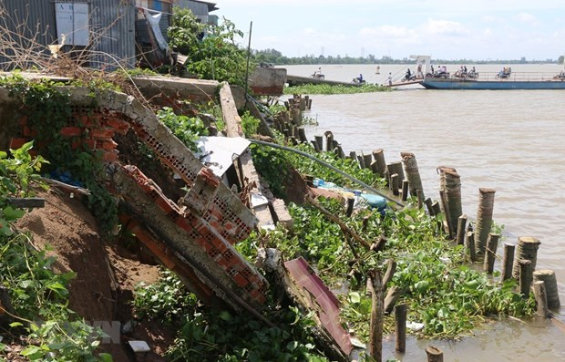 Sinking predicted for Mekong Delta region hinh anh 2