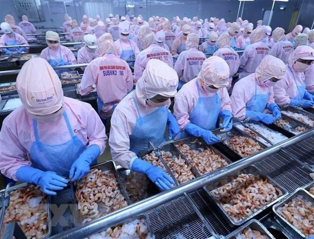Seafood industry targets 9 billion USD in export revenue hinh anh 1