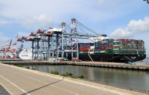 Container stevedoring service costs should increase: Insiders hinh anh 1