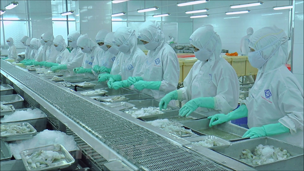 Vietnamese firms need support to get immunity against COVID-19 hinh anh 1