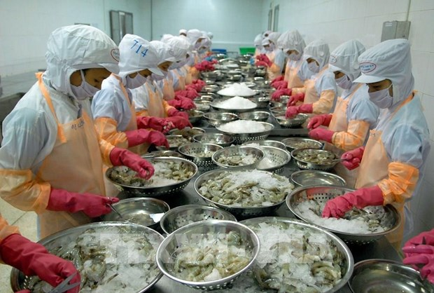 Resilience helps Vietnam overcome year of COVID-19 hinh anh 2