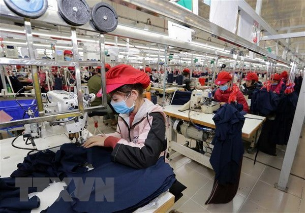 Online trade promotion helps businesses adapt to COVID-19 hinh anh 1