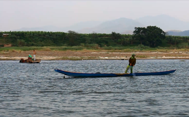 One-third of freshwater fish species facing extinction hinh anh 1