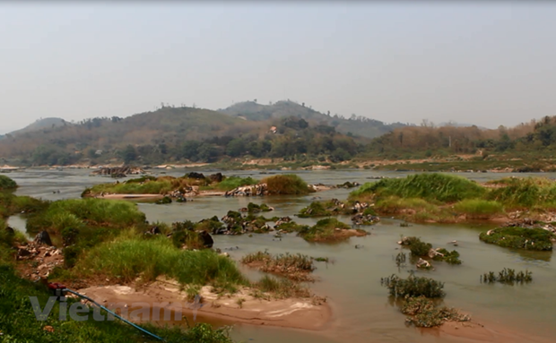 One-third of freshwater fish species facing extinction hinh anh 2