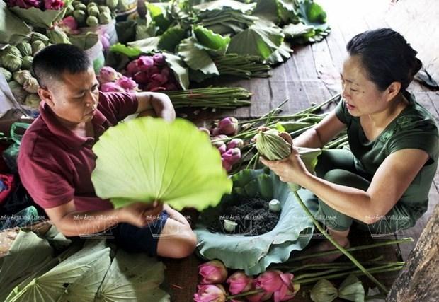 Quintessence of Vietnamese tea art hinh anh 2