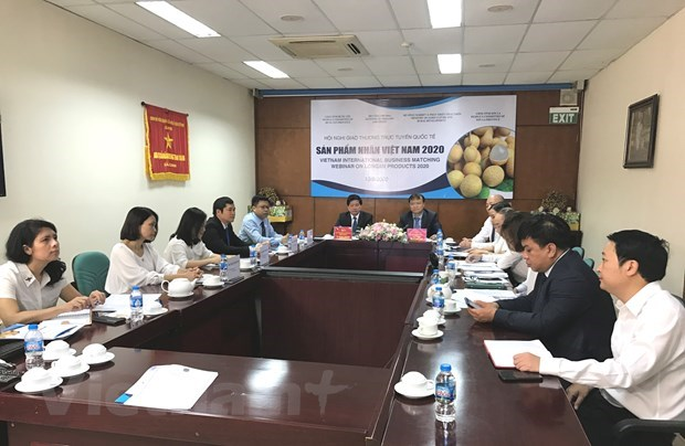 Importers explore partnerships for trading longan hinh anh 1
