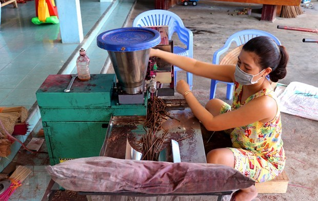 Thuy Xuan incense making village keeps tradition alive hinh anh 2