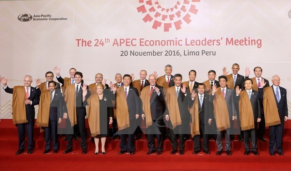 Vietnam receives support in hosting APEC Year 2017: Deputy PM hinh anh 1