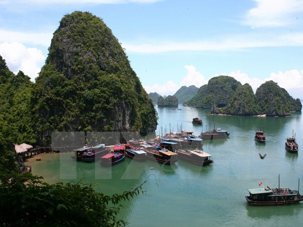 Quang Ninh develops high-quality tourism services on Ha Long Bay hinh anh 1