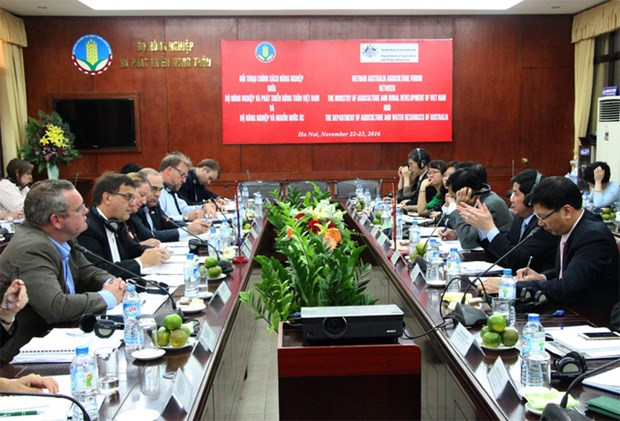 Vietnam, Australia to set up working group for agribusiness promotion hinh anh 1