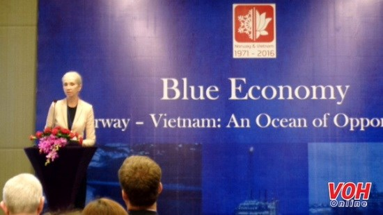 Vietnam, Norway look to optimise maritime economic cooperation hinh anh 1