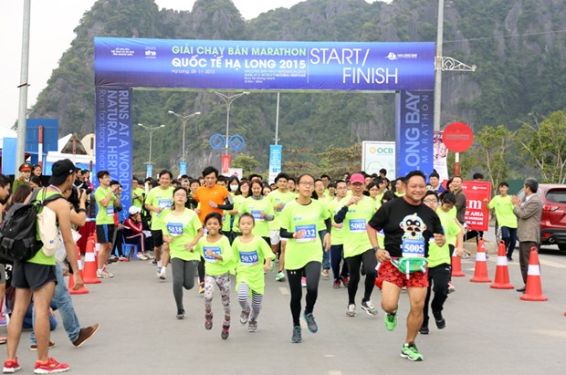 Over 800 athletes to race at Ha Long Bay Heritage Marathon hinh anh 1