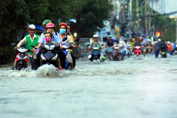 HCM City flood control master plan inadequate: official hinh anh 1