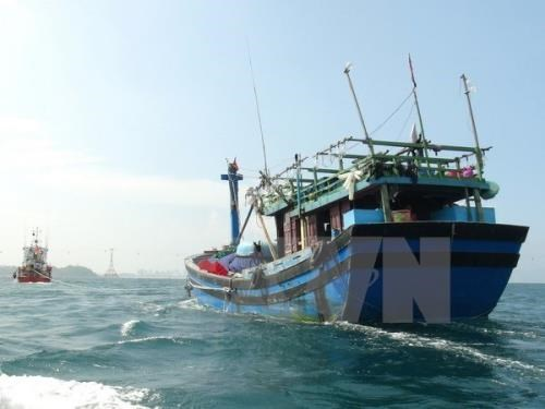 Quang Ngai rescues fishing vessel in distress hinh anh 1