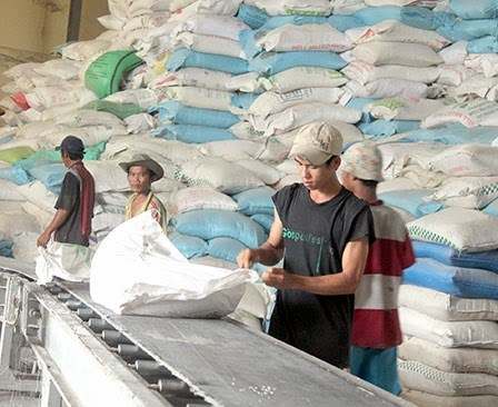 Can Tho, Australia to stimulate trade, agriculture hinh anh 1