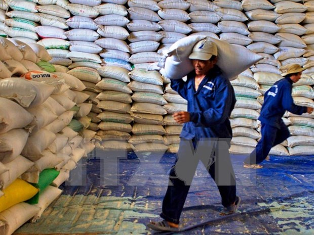 Rice exports see sharp drop due to market difficulty hinh anh 1