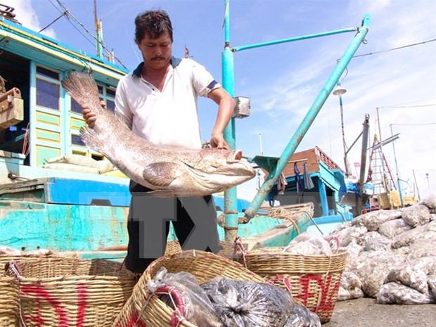 Agro-forestry-fishery exports reach 29.1 billion USD so far hinh anh 1