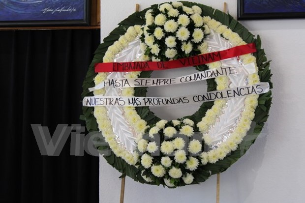 Vietnamese expats in Mexico mourn for Fidel Castro hinh anh 1