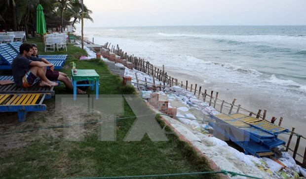 Project hoped to save Hoi An's coast from erosion hinh anh 1