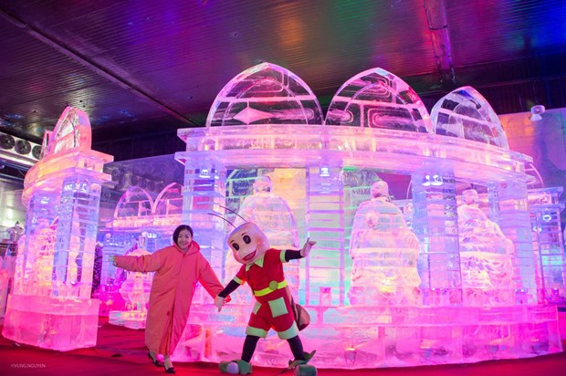 HCM City: Ice sculpture exhibition opens at Dam Sen Park hinh anh 1