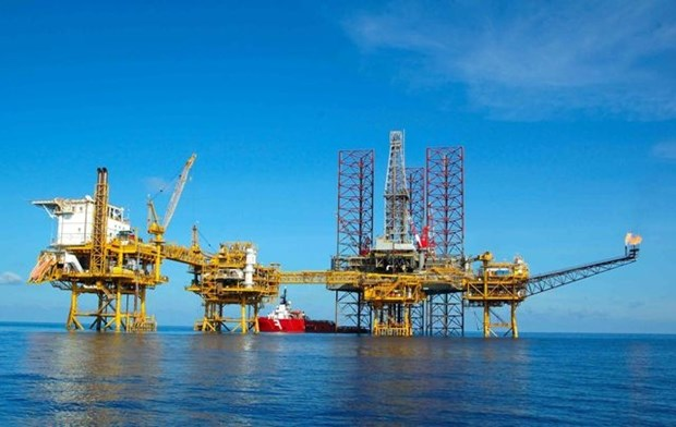 New oil reserve found in Bach Ho well hinh anh 1
