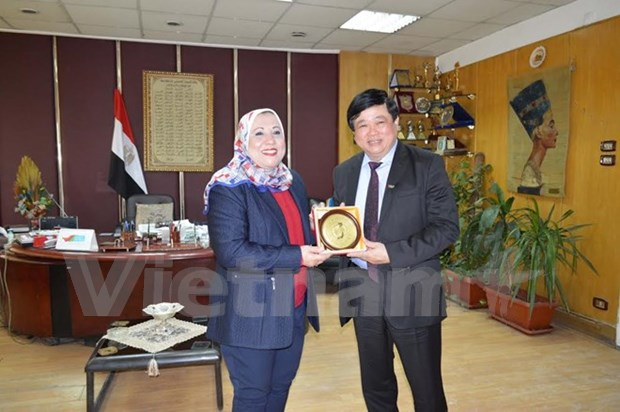 Vietnam, Egypt radio stations foster broadcasting cooperation hinh anh 1