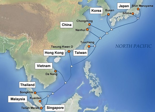Asia's largest-capacity cable line to become operational hinh anh 1