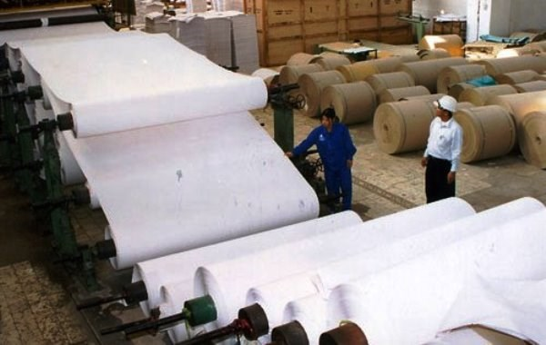 Paper sector's growth slows down hinh anh 1