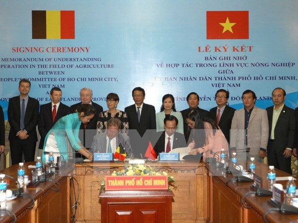 Belgian regions' firms seek to invest in HCM City hinh anh 1
