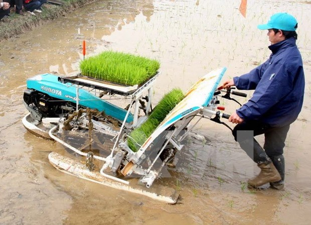 Vietnam seeks more int'l help for sustainable agriculture hinh anh 1