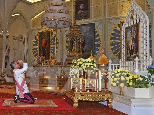 Thai King adds new members to advisory body hinh anh 1