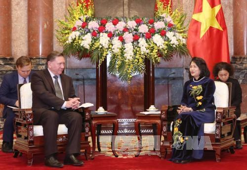 Vietnam welcomes projects from Russia: Vice President hinh anh 1