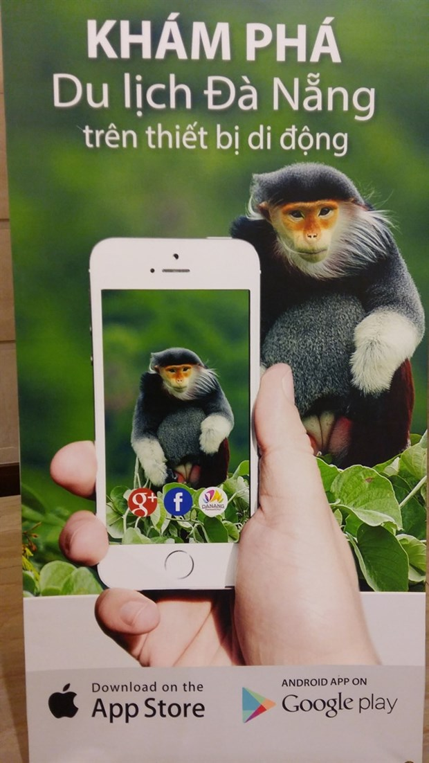 Tourism information app launched in Da Nang hinh anh 1