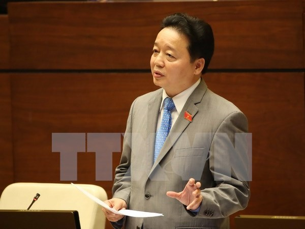 Minister eases local worries over environmental pollution hinh anh 1