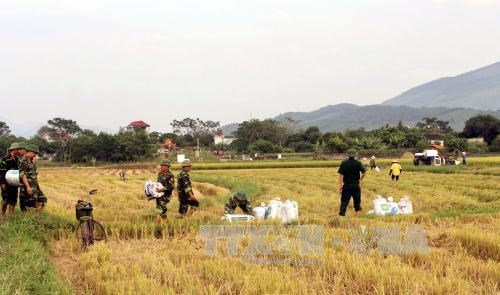 Quang Ninh aims to eradicate extreme poverty by 2020 hinh anh 1