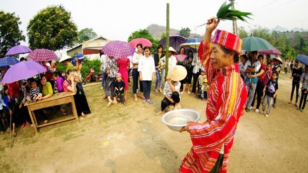Arts festival honours diverse ethnic cultures hinh anh 1