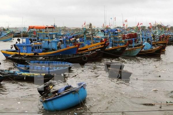 Coastal provinces brace for tropical depression hinh anh 1