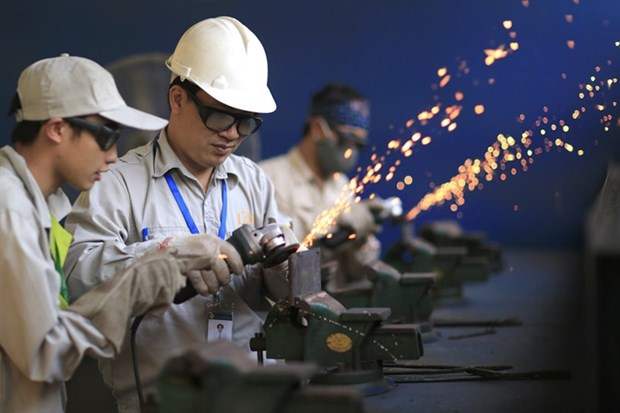 Time ripe to modernise technical education: expert hinh anh 1