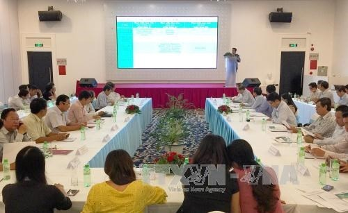 Can Tho strives to become Mekong Delta's startup hub hinh anh 1
