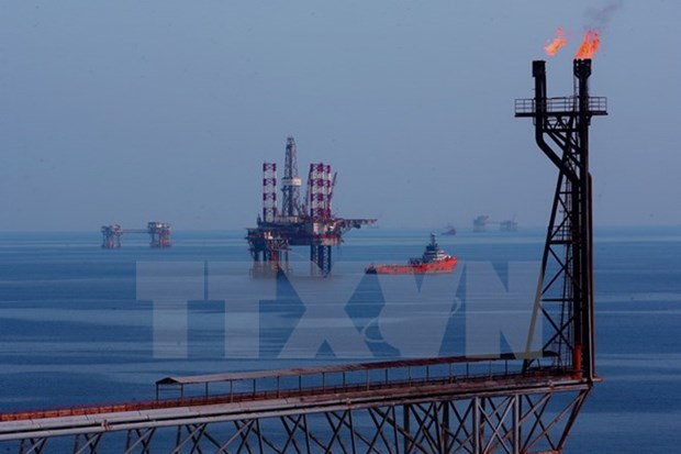 Vietsovpetro taps 5.04 million tonnes of crude oil this year hinh anh 1