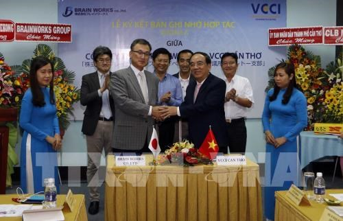Can Tho, Japan group bolster trade promotion hinh anh 1