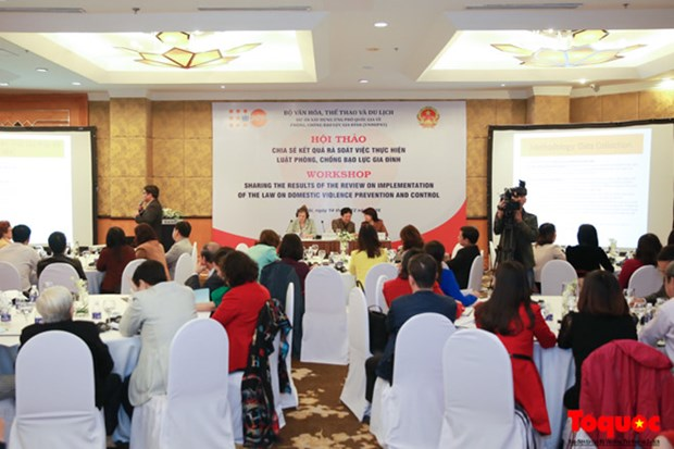 Family-prioritised culture matters to anti-domestic violence law hinh anh 1