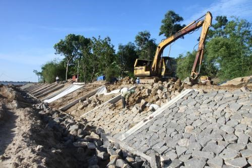 Tien Giang speeds up construction of salinity prevention works hinh anh 1